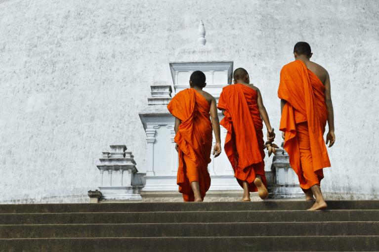 Sri Lanka, um Lugar para Sonhar