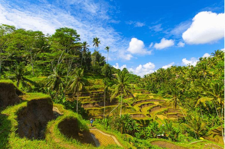 Romance Balinês