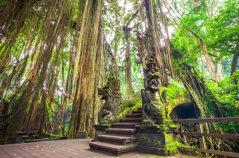 Ubud | Indonésia