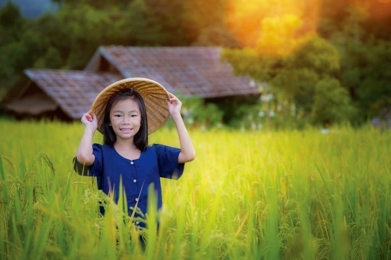 Belezas do Vietname